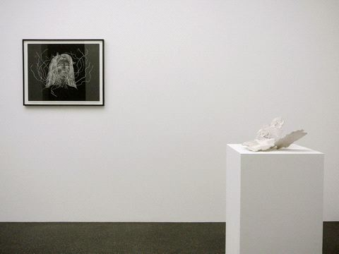 Kiki Smith, Norbert Prangenberg / Kiki Smith